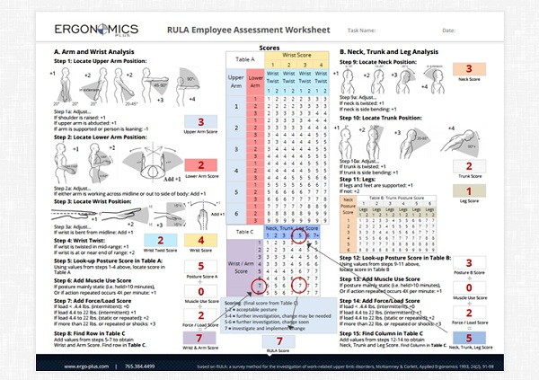 A Step-by-Step Guide to the RULA Assessment Tool